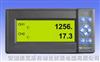 GDV202 二通道一体式多功能无纸记录仪