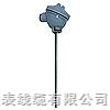 WRNK-191S装配热电偶