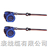 WZPB/WZCB一體化防爆熱電阻