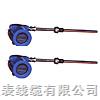 WZPB/WZCB一体化防爆热电阻