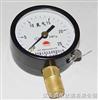 YN-100/150氮氣壓力表
