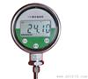 CRJ-100数显温度显示仪
