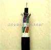 氟塑料绝缘聚氯乙烯护套控制电缆
